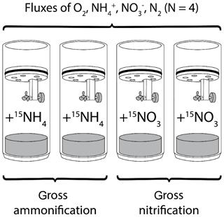 https://www.biogeosciences.net/17/2839/2020/bg-17-2839-2020-f02