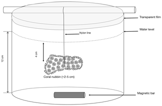 https://www.biogeosciences.net/17/887/2020/bg-17-887-2020-f01