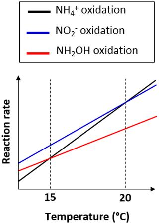 https://www.biogeosciences.net/17/979/2020/bg-17-979-2020-f07