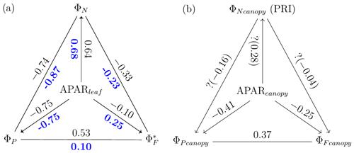 https://bg.copernicus.org/articles/18/441/2021/bg-18-441-2021-f11